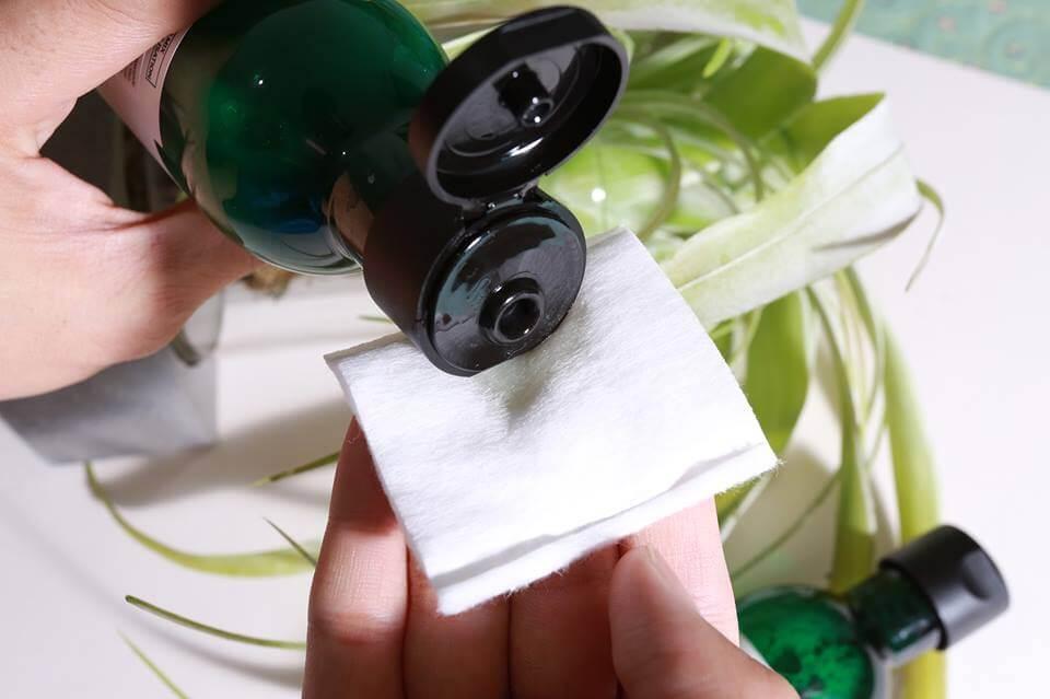 Nước hoa hông là món mỹ phẩm không thể thiếu trong quá trình chăm sóc da của mỗi cô gái